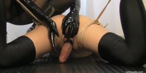 tied down and drained cock