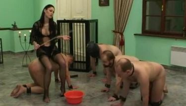 Slave Sexual Girl Has Sex With Dog Zootrex Free Amateur Porn